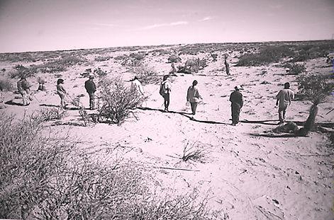Búsqueda de desaparecida en los alrededores de C. Juárez